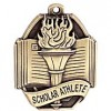 Winter Varsity Teams all qualify as NYSPHSAA Scholar-Athlete Teams